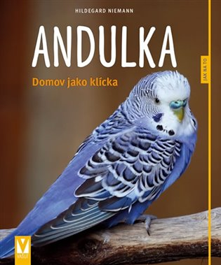 ANDULKA - DOMOV JAKO KLÍCKA (JAK NA TO)