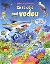 Obálka knihy Co se děje pod vodou - Podívej se pod obrázek