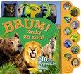 Obálka knihy Brum! Zvuky ze ZOO!