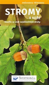 Obálka titulu Stromy a keře - Naučte se znát nejdůležitější druhy