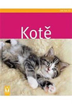 Obálka titulu Kotě