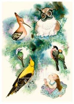 Obálka titulu Pohlednice - Květuška, ptáčci