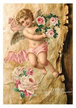 Obálka titulu Pohlednice - Andělíček a růže
