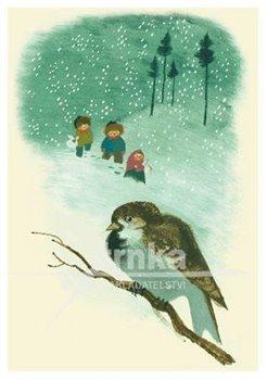 Obálka titulu Pohlednice - Zimní ptáček