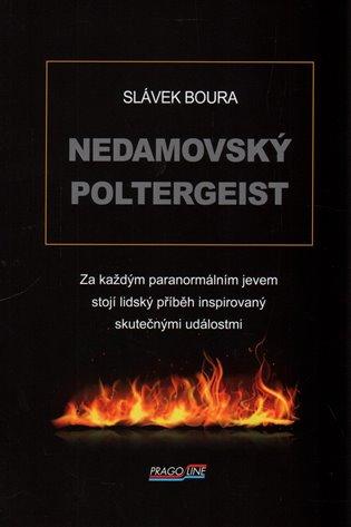 Nedamovský poltergeist:Za každým paranormálním jevem stojí lidský příběh inspirovaný skutečnými událostmi - Slávek Boura   Booksquad.ink