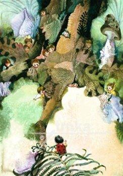 Obálka titulu Plakát - Broučci v lese