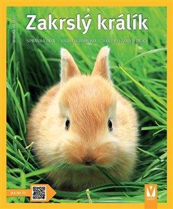 Obálka titulu Zakrslý králík