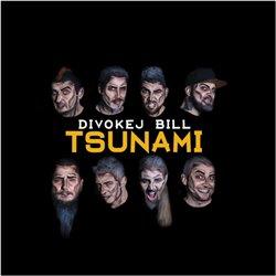 Obálka titulu Tsunami