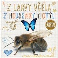 Z larvy včela, z housenky motýl - Životní cyklus
