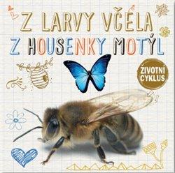 Obálka titulu Z larvy včela, z housenky motýl - Životní cyklus