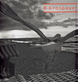 Obálka titulu Viktor Kronbauer - Divadelní fotografie / Theatre Photography