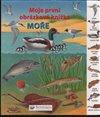 Obálka knihy Moře - Moje první obrázková knížka