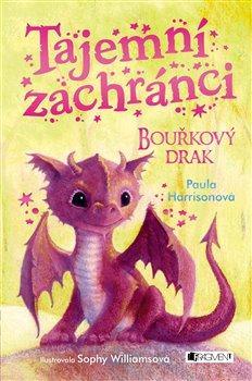 Obálka titulu Tajemní zachránci – Bouřkový drak