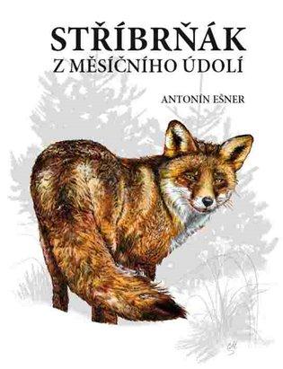 Stříbrňák z Měsíčního údolí - Antonín Ešner | Booksquad.ink