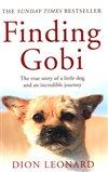 Obálka knihy Finding Gobi