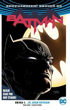 Obálka titulu Batman: Já jsem Gotham