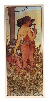Obálka titulu Pohled Alfons Mucha – Carnation, dlouhý