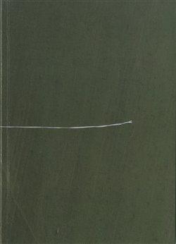 Obálka titulu Poznámky o vzducholodích