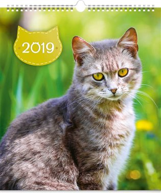 Nástěnný kalendář Kočky 2019 - -   Booksquad.ink