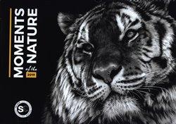 Obálka titulu Nástěnný kalendář Momenty v přírodě 2019