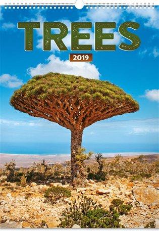 Nástěnný kalendář Trees 2019 - - | Booksquad.ink