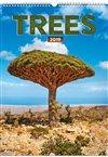 Obálka knihy Nástěnný kalendář Trees 2019