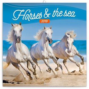 Poznámkový kalendář Koně a moře 2019 - - | Booksquad.ink