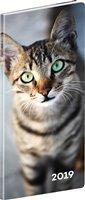 Obálka knihy Kapesní diář Kočky 2019, plánovací měsíční