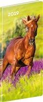 Obálka knihy Kapesní diář Koně 2019, plánovací měsíční