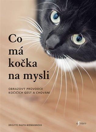 Co má kočka na mysli:Obrazový průvodce kočičích gest a chování - Brigitte Rauth–Widmannová | Booksquad.ink