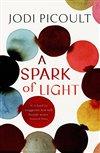 Obálka knihy A Spark of Ligh