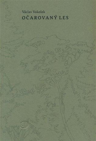 Očarovaný les - Václav Vokolek   Booksquad.ink