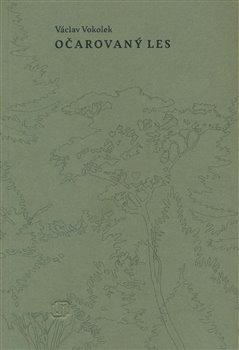 Obálka titulu Očarovaný les