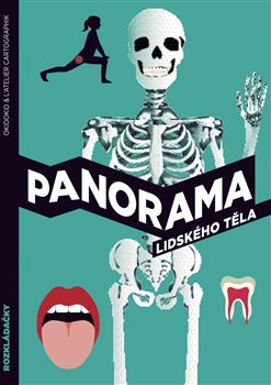 Obálka titulu Panorama lidského těla