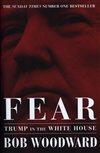 Obálka knihy Fear