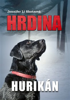 Obálka titulu Hrdina: Hurikán