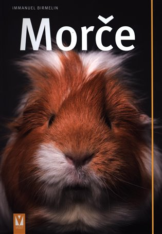 Morče - Immanuel Birmelin | Booksquad.ink