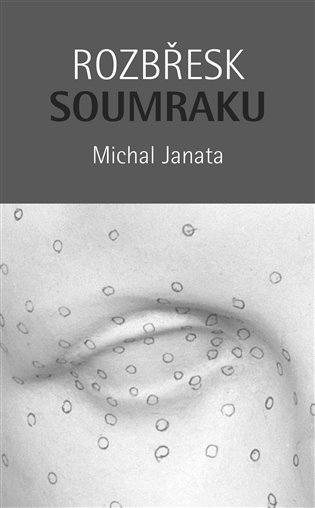 Rozbřesk soumraku:Kniha o vidění - Michal Janata   Booksquad.ink