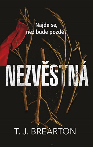 Nezvěstná - T. J. Brearton | Booksquad.ink