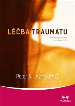 Obálka titulu Léčba traumatu