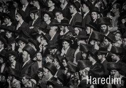 Obálka titulu Haredim
