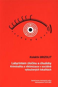 Obálka titulu Labyrintem zločinu a chudoby