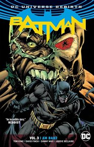 Batman: Já jsem zhouba