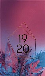 18měsíční diář Petito – Neon 2019/2020