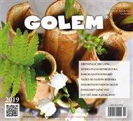 Golem 2/2019