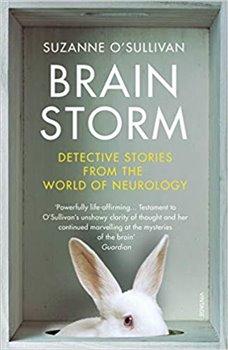 Obálka titulu Brainstorm : Detective Stories From the World of Neurology
