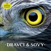 Obálka knihy Dravci a sovy