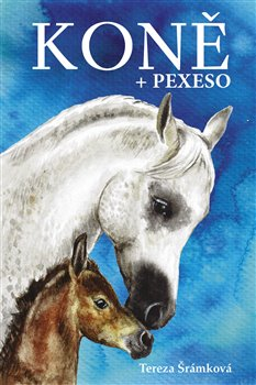 Koně - pexeso