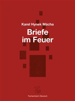 Obálka titulu Briefe im Feuer / Dopisy v ohni