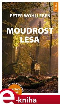 Obálka titulu Moudrost lesa